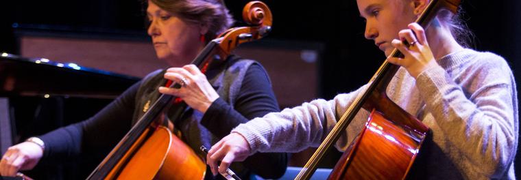 Ela_Hendriks_IMG_5515_Winterfestijn_cello_detail_image.png